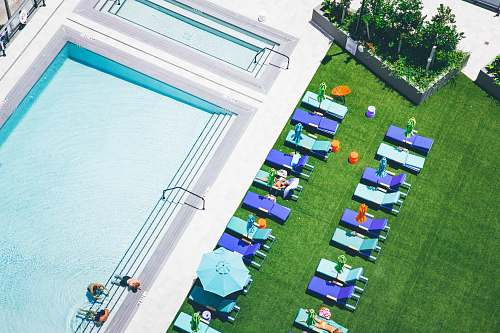 grass aerial photo of sunlounger near water pool toy