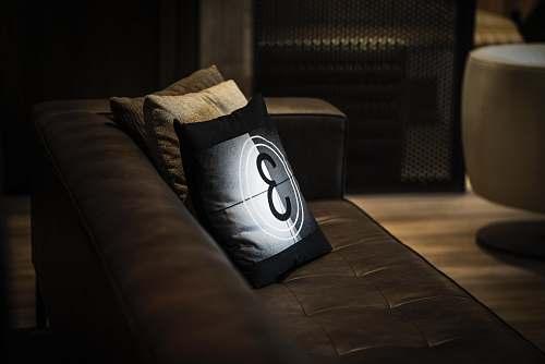 pillow three white, black, and brown throw pillows on sofa seat