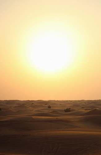 desert beige sand during sunset dubai
