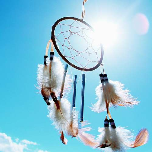 dream worm's eyeview photo of dream catcher feathers