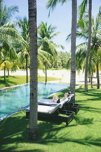 arecaceae person lying on lounge chair near pool flora