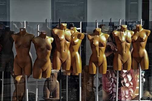 person torso mannequin lot mannequin
