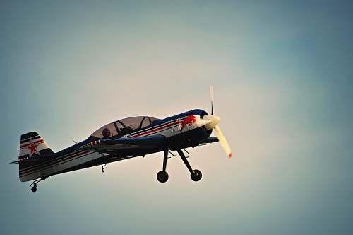 plane photo of Red Bull print plane austria