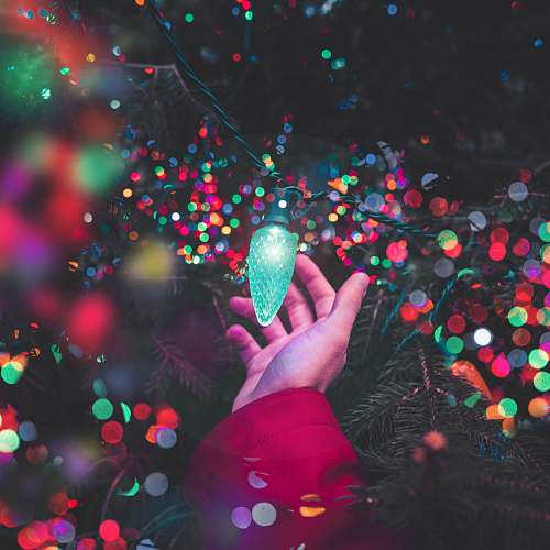 photo confetti bokeh photography of person holding green string light paper free for commercial use images