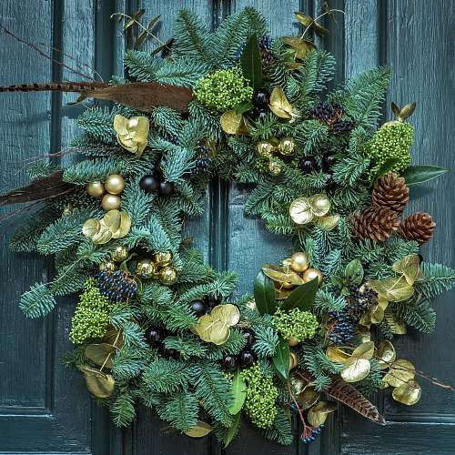 photo holiday green wreath wreath free for commercial use images