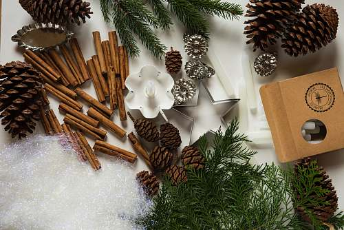 photo gingerbread pine cone and cinnamon stick lot food free for commercial use images