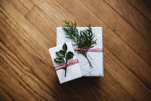 gift two green leaves on white cardboard boxes holiday