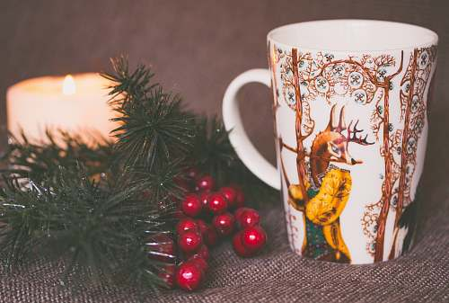 cup white and brown print ceramic mug near red mistletoe and candle sea life