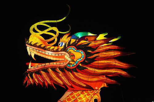 photo lights red and multicolored dragon illustration night free for commercial use images