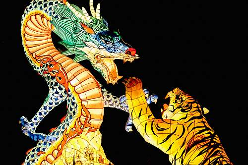human tiger and dragon illustration people