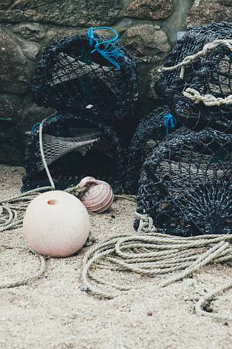 photo egg black fish nets bryher free for commercial use images