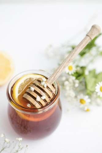 plant honey in glass on tabel honey