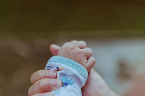 photo baby person holding baby's hand newborn free for commercial use images