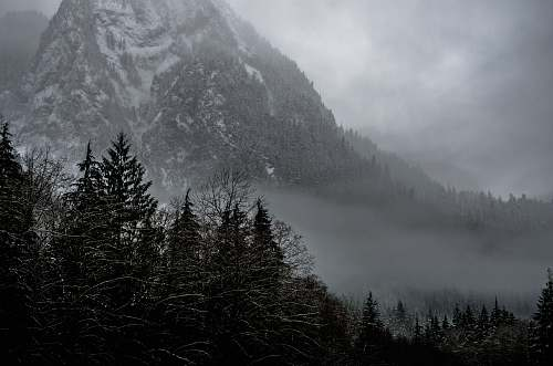mountain mountain covered snow and surrounding trees forest