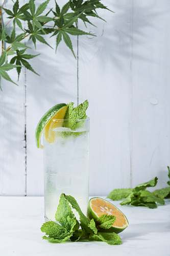 photo food green lime beside drinking glass fruit free for commercial use images