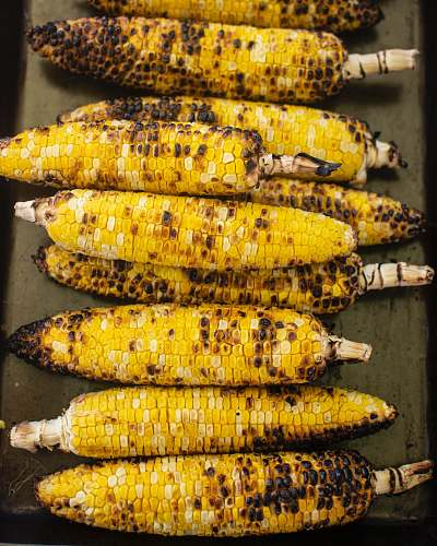 photo food grilled corns corn free for commercial use images