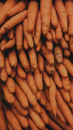 vegetable pile of carrots food