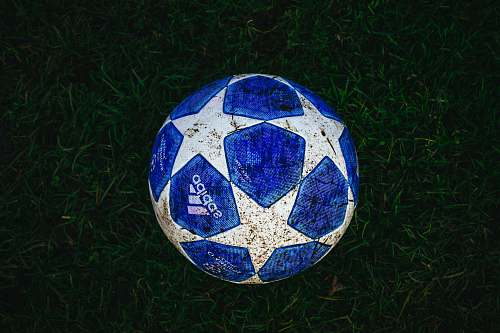 photo football blue and white star print soccer ball on grass soccer ball free for commercial use images