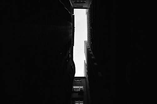 street grayscale photography of buildings black-and-white