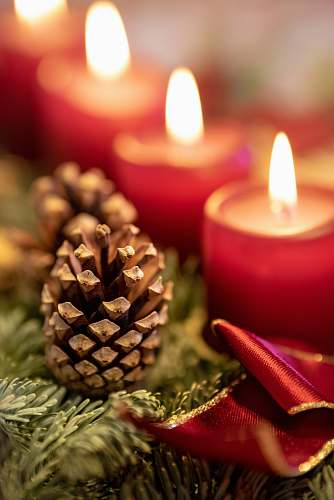 photo candle brown pinecone advent free for commercial use images