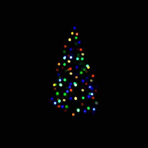 prievidza Christmas tree string lights slovakia