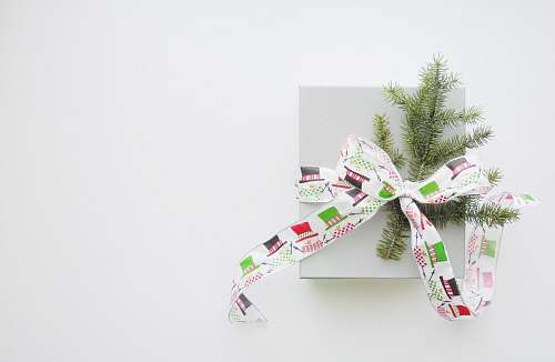photo gift green pine tree leaves tied with multicolored fabric strap ribbon paper free for commercial use images