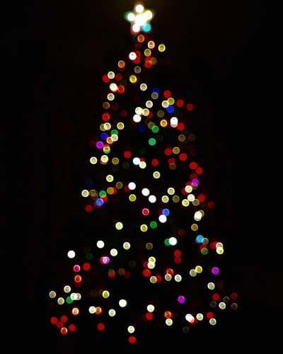 photo tree multicolored lighted Christmas tree lights free for commercial use images