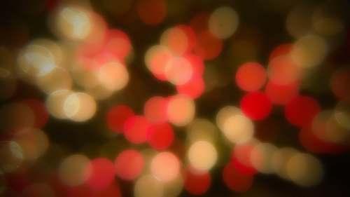 bokeh red and white bokeh lights lights