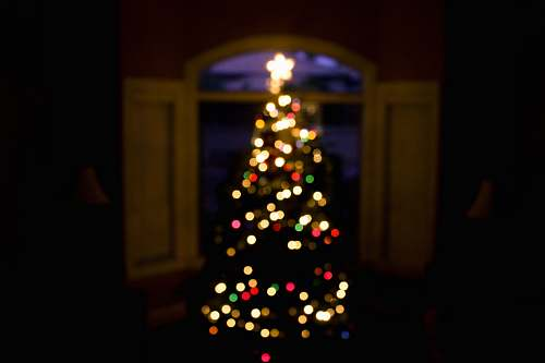 photo lights shallow focus photography of green Christmas tree with multicolored string lights tree free for commercial use images