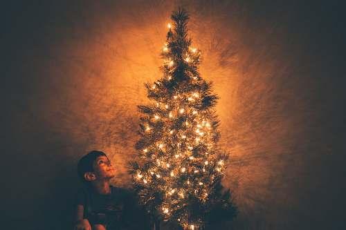 edinburg smiling boy beside Christmas tree with lighted string lights united states