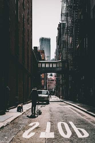 urban man walking on road with dog during daytime street