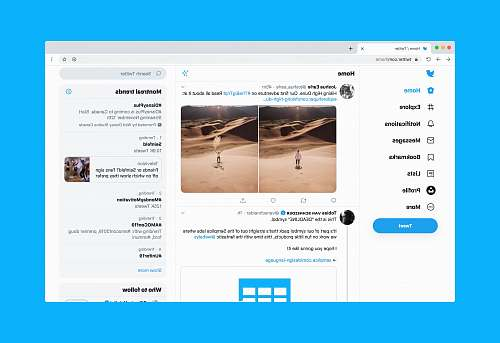 human Twitter website on desktop person