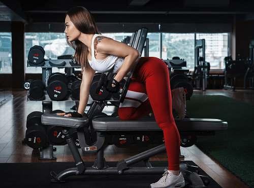 sport woman using dumbbells human