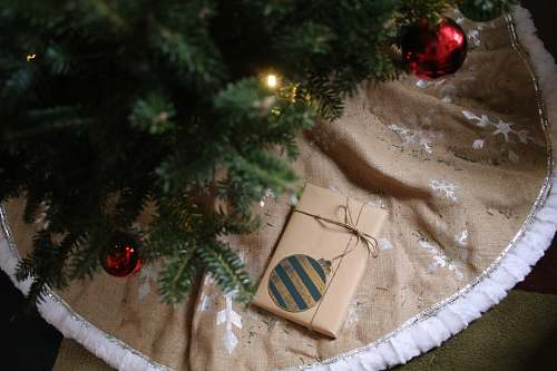jar gray wrapped gift below the Christmas tree plant