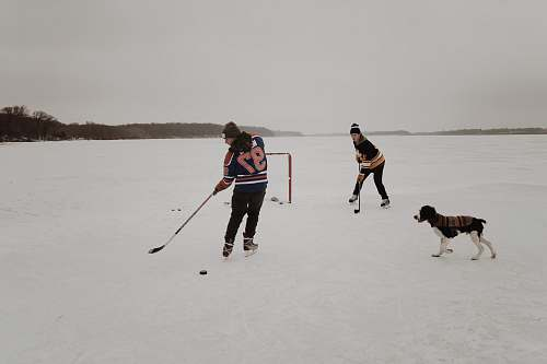 photo hockey two men playing ice hockey game people free for commercial use images