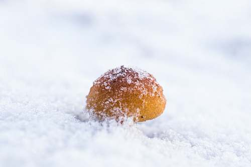 snow  confectionery