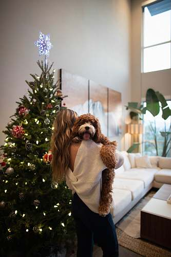 photo indoors woman carrying dog beside Christmas tree room free for commercial use images