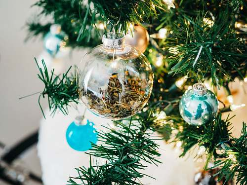 tree clear and teal glass baubles hanged on lighted Christmas tree seasoning