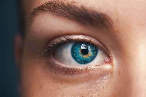 person selective focus of blue-eyed person human