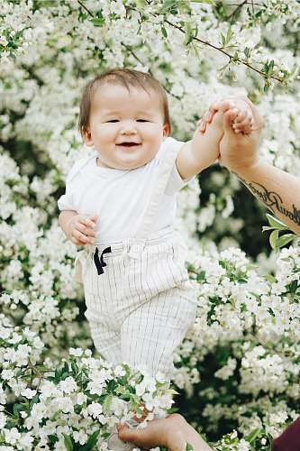 photo human baby near white petaled flowers skin free for commercial use images