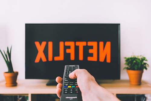 photo plant person holding remote pointing at TV pottery free for commercial use images