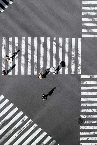 photo asphalt bird's-eye view photography of people crossing street tarmac free for commercial use images