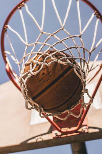 photo basketball basketball on ring tega cay free for commercial use images