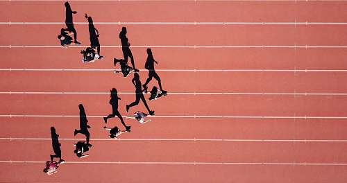 photo track group of people running on stadium exercise free for commercial use images
