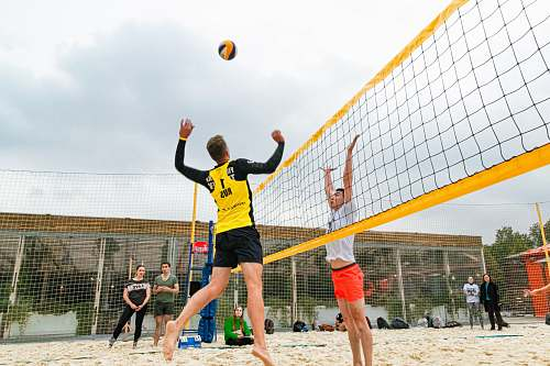 photo human man wearing yellow and black long-sleeved shirt playing volleyball team sport free for commercial use images