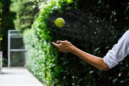 ball person throwing tennis ball tennis