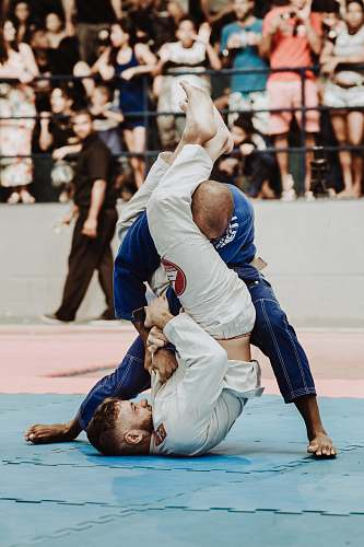 photo person shallow focus photo of two man playing taekwondo martial arts free for commercial use images