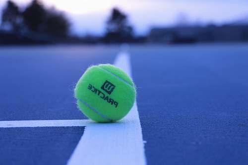 tennis green Wilson practice tennis ball in field ball
