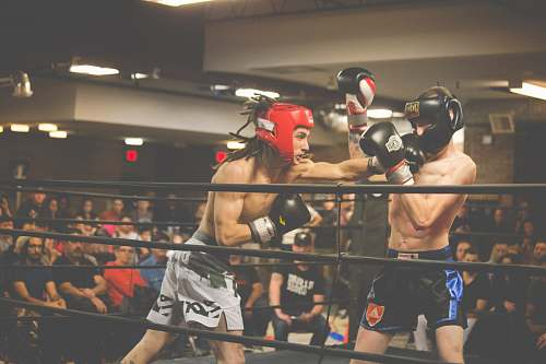 sport two person playing kick boxing boxing