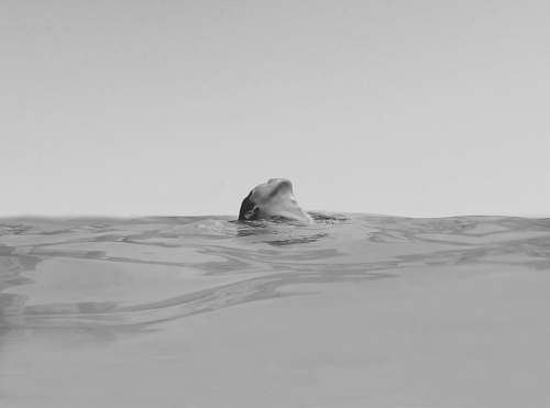 swimming woman swimming on the ocean photography black-and-white